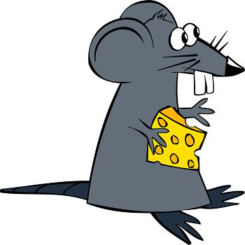 Кошка и мышка сказка: 8 мышиных историй